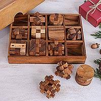 Wood puzzle set, 'Array of Challenges' (set of 12) - 12 Handcrafted Wood Puzzles with Box from Thailand
