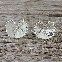 Sterling silver plated natural leaf button earrings, 'Shining Pennywort' - Silver Plated Natural Centella Leaf Earrings from Thailand