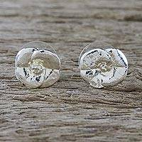 Sterling silver plated natural flower button earrings, 'Shining Petals' - Silver Plated Natural Crown of Thorns Flower Button Earrings