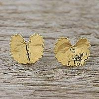 Gold plated natural centella leaf button earrings, 'Shining Pennywort' - Gold Plated Natural Centella Leaf Earrings from Thailand