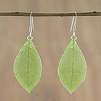 Natural leaf dangle earrings, 'Stunning Nature in Light Olive' - Natural Leaf Dangle Earrings in Light Olive from Thailand
