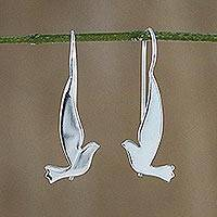 Sterling silver drop earrings, 'Friendly Doves' - Sterling Silver Shining Dove Drop Earrings from Thailand