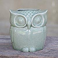 Celadon ceramic toilet tissue holder, 'Sleepy Owl' - Celadon Ceramic Owl Shaped Toilet Tissue Holder