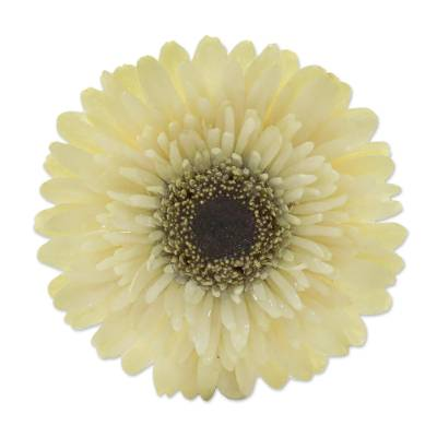 Natural Gerbera Flower Brooch in Vanilla from Thailand