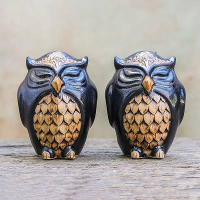 Ceramic salt and pepper shakers, 'Calm Owls in Black' (pair) - Ceramic Owl Salt and Pepper Shakers in Black (Pair)