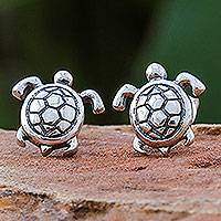 Sterling silver stud earrings, 'Tiny Turtles' - Thai Artisan Handcrafted Sterling Silver Turtle Earrings