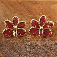 Gold-plated natural orchid button earrings,