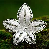 Sterling silver brooch pin, 'Regal Orchid'