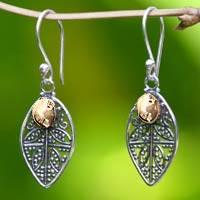 Sterling silver filigree earrings, 'Golden Dew' - Golden Dewdrops on Filigree Leaves Dangle Earrings