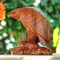 Wood sculpture, 'Eagle Gaze' - Artisan Crafted Wood Bird Sculpture