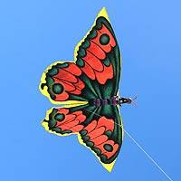Kite, 'Monarch Butterfly' - Kite