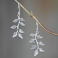 Sterling silver floral earrings, 'Banyan' - Sterling silver floral earrings