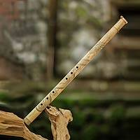 Bamboo flute, 'White Dragon Song V'