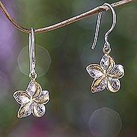 Gold accent flower earrings, 'Golden Frangipani'