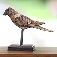 Wood sculpture, 'Brown Pigeon' - Rustic Wooden Pigeon Sculpture Hand Carved in Bali