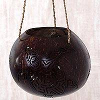 Coconut shell hanging basket, 'The Sea Turtle' - Coconut Shell Hanging Basket Turtle from Indonesia