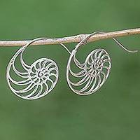 Sterling silver drop earrings, 'Spiral Nautilus'