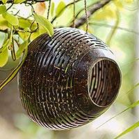 Coconut shell birdhouse, 'Morning Chirps' - Hand Made Coconut Shell Birdhouse from Indonesia