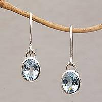 Blue topaz dangle earrings, 'Blue Paws' - Blue Topaz and Sterling Silver Paw Print Dangle Earrings