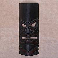 Wood mask, 'Papua Shield' - Hand Carved Albesia Wood Wall Mask from Bali