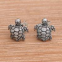 Sterling silver stud earrings, 'Sweet Shells' - Artisan Made Sterling Silver Turtle Stud Earrings from Bali