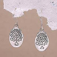 Sterling silver dangle earrings, 'Growing Reflection' - Sterling Silver Reflective Growing Tree Oval Dangle Earrings