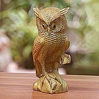 Wood sculpture, 'Bird of Prey' - Hand-Carved Wood Owl Sculpture from Bali