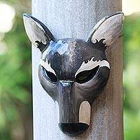 Wood mask, 'The Grey Wolf' - Hand-Carved Wood Wolf Mask in Grey from Bali