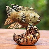 Wood figurine, 'Gourami Fish' - Hand-Carved Wood Gourami Fish Figurine from Bali