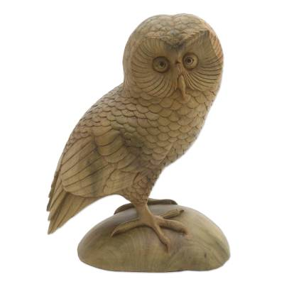 Wood sculpture, 'Intelligent Owl' - Hand-Carved Hibiscus Wood Owl Sculpture from Bali