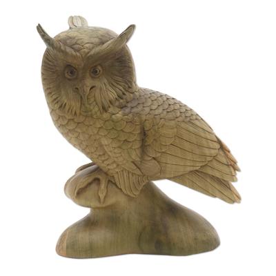 Wood sculpture, 'Focused Owl' - Hand-Carved Hibiscus Wood Sculpture of a Focused Owl