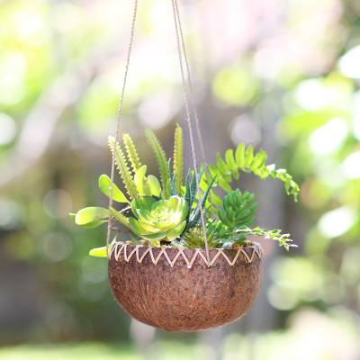 Coconut shell hanging planter, 'In the Rough' - Hanging Coconut Shell Plant Pot