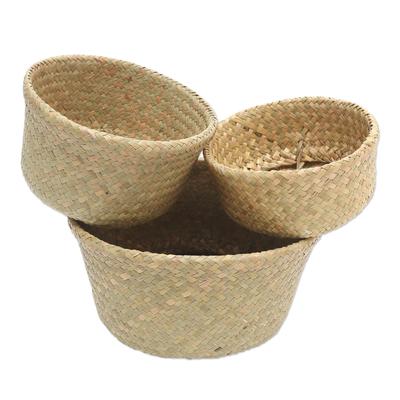 Hand Crafted Natural Fiber Baskets (Set of 3)