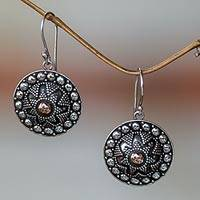 Sterling silver dangle earrings, 'Shields'