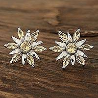 Rhodium plated citrine button earrings, 'Scintillating Stars' - Citrine flower earrings