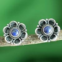 Lapis lazuli flower earrings, 'Indian Gentian' - Indian Floral Sterling Silver Button Lapis Lazuli Earrings