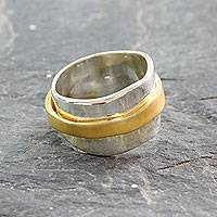 Gold plated spinner ring, 'Wheel of Existence' - 18k Gold Plate and Sterling Silver Spinner Style Band Ring