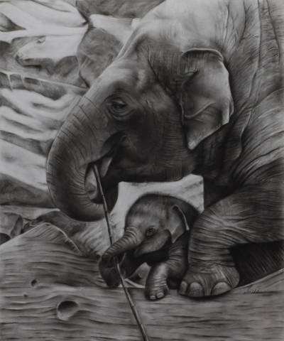 'Mother and Child I' (2014) - Realistic Charcoal Painting of Elephant and Calf