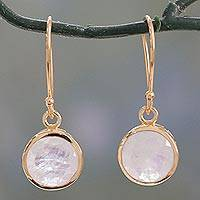 Vermeil rainbow moonstone dangle earrings, 'Elite Discretion' - Indian Gold Vermeil Hook Earrings with Rainbow Moonstone