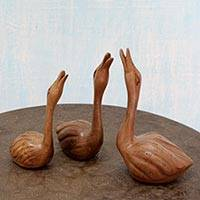 Wood sculptures, 'Swan Family' (set of 3) - Hand Carved Walnut Wood Swan Sculptures (Set of 3)