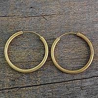 Gold plated sterling silver hoop earrings, 'Timeless Twist' - 22k Yellow Gold Plated Sterling Silver Hoop Earrings