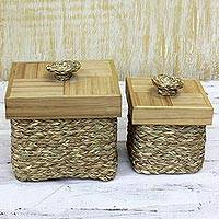 Natural fiber and bamboo boxes, 'Natural Essentials' (pair) - 2 All Purpose Hand Woven Boxes Natural Fibers with Bamboo