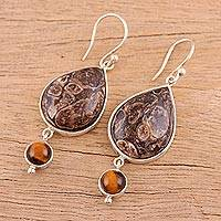 Turritella agate and tiger's eye dangle earrings, 'Earthy Allure' - Turritella Agate and Tiger's Eye Dangle Earrings