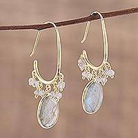 Gold plated labradorite dangle earrings, 'Regal Beauty' - Gold Plated 13 Carat Labradorite Dangle Earrings