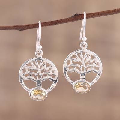 Novica Sterling silver dangle earrings, Floral Corona