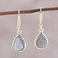 Gold plated labradorite dangle earrings, 'Fantastic Drops' - Gold Plated 4-Carat Labradorite Dangle Earrings from India