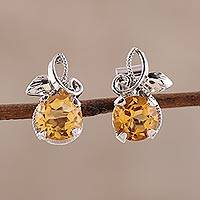 Rhodium plated citrine stud earrings, 'Golden Bliss' - Citrine Stud Earrings Plated in Rhodium from India