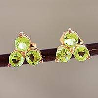 Gold-plated peridot stud earrings, 'Chennai Stars' - Gold-Plated Sterling Silver Peridot Stud Earrings from India