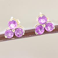 Gold-plated amethyst stud earrings, 'Regal Trio' - Gold-Accented Sterling Silver Amethyst Stud Earrings