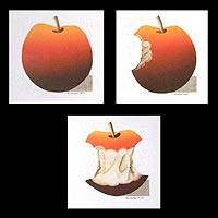 'Red Apple' (triptych)